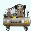 Máy nén khí PEGASUS TM-V-0.6/8-330L