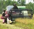 Máy gặt UMC - 2009