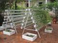 Giàn treo trồng rau thủy canh GT5