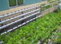 Giàn treo trồng rau thủy canh GT4